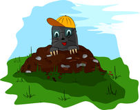 Mole with a cap on molehill Royalty Free Stock Images