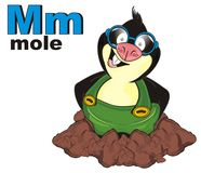 Mole and colored abc. Smiling mole with his name and letters l Royalty Free Stock Photography