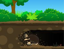 Mole Dig Cartoon. Mole digging tunnel underground, color vector cartoon illustration horizontal Royalty Free Stock Image