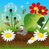 Mole in the ground and insects Royalty Free Stock Photo