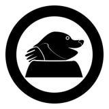 Mole icon in round black color vector illustration for garden craft. Mole icon in round black color vector illustration flat style for garden craft Stock Photos