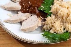 Mole mit Huhn und Reis Stockbild