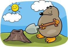 Mole mit Schaufelkarikaturillustration Lizenzfreie Stockfotos