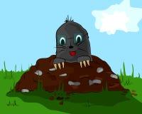Mole on molehill. A small mole with glass on the meadow molehill Royalty Free Stock Image