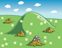 Mole and Molehills on Green Landscape with Flowers Stock Image