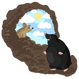 Mole and mouse. Vector illustration of mole and mouse Stock Photos
