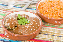 Mole Poblano Stock Photography