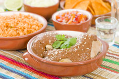 Mole Poblano Royalty Free Stock Images