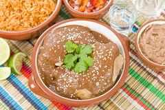 Mole Poblano Royalty Free Stock Photo