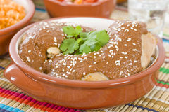 Mole Poblano Royalty Free Stock Photos