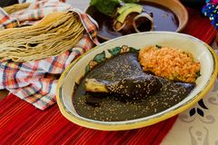 Mole Poblano Traditional Mexican Food with Chicken in Mexico. Mexican Feast in a talavera plate royalty free stock photos