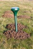Mole repeller. Placing a mole repeller in the garden Stock Photography