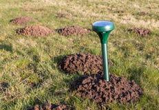 Mole repeller. Placing a mole repeller in the garden Royalty Free Stock Photos