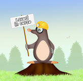 Mole with sign work in progress Stock Images