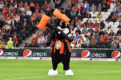 Mole - a symbol of the team Shakhtar Royalty Free Stock Photos