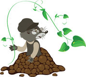Mole, vector illustration. Mole with a green sprig, vector illustration vector illustration