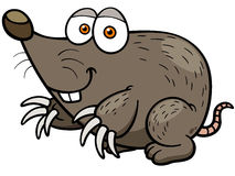 Mole. Vector illustration of cartoon mole Stock Photo