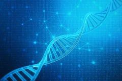 Molecola artificiale del DNA di intelegence Il DNA è convertito in codice binario Genoma di codice binario di concetto Tecnologia illustrazione di stock