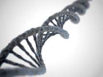 Molecola del DNA su fondo bianco Immagine Stock