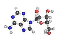 Molecola del nucleosidico dell'adenosina (A), struttura chimica. Ciò è o Fotografia Stock Libera da Diritti