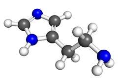 Molecola dell'istamina Immagini Stock