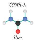 Molecola dell'urea di CH4N2O Immagini Stock Libere da Diritti