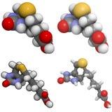 Molecola della vitamina B7 (biotina) Immagini Stock Libere da Diritti