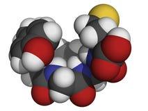 Molecola di Enkephalin (Incontrato-enkephalin) Immagini Stock
