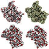 Molecola di Polycaprolactone Immagini Stock