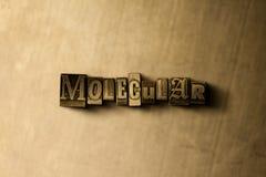 MOLECOLARE - il primo piano dell'annata grungy ha composto la parola sul contesto del metallo fotografia stock libera da diritti