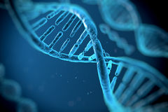 Molecole del DNA Immagine Stock Libera da Diritti