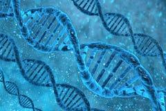 Molecole del DNA Fotografie Stock Libere da Diritti
