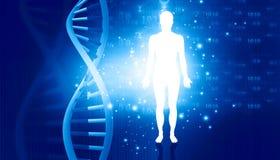 Molecole ed uomini del DNA royalty illustrazione gratis
