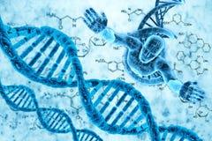Molecole ed uomini del DNA Immagine Stock