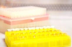 Molecular biology Stock Images