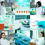 Molecular biology, collage Royalty Free Stock Photos