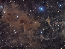 Molecular Clouds in Cepheus Royalty Free Stock Photos