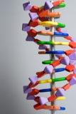 Molecular, DNA y átomo modele en laboratorio de investigación de la ciencia Imagenes de archivo