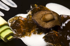 Molecular gastronomy - mushroom soup Stock Photography