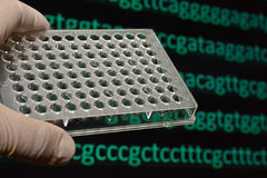 Molecular genetics and biotechnology. Stock Photography