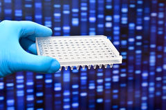 Molecular genetics and biotechnology. Royalty Free Stock Images