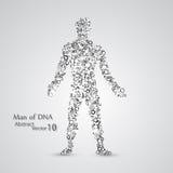 Molecular structure in the form of man. Vector elegant illustration vector illustration