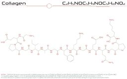 Molecule of Collagen Royalty Free Stock Images