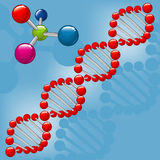 Molecule DNA Royalty Free Stock Photo