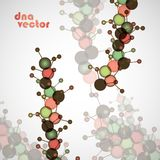 Molecule DNA. Abstract background Stock Photo