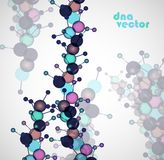 Molecule DNA. Abstract background Royalty Free Stock Photos