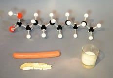 Oleic acid molecule model Stock Images
