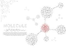 Molecules 3d Concept of nervous system. Low poly wireframe illustration. Vector polygonal image on white background. Molecules 3d Concept of neurons and nervous vector illustration