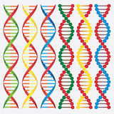 Molecules van DNA. Stock Fotografie