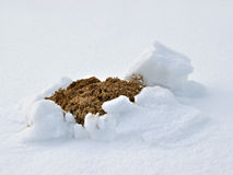 Molehill in snow Royalty Free Stock Photo